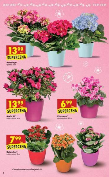 Biedronka gazetka promocyjna od 2018-03-08, strona 6