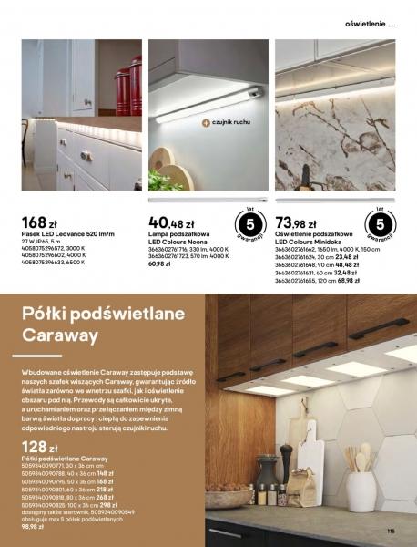 Castorama gazetka promocyjna od 2021-04-13, strona 115