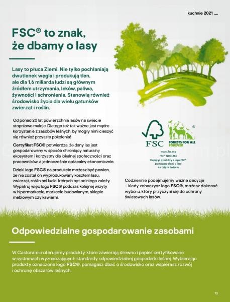 Castorama gazetka promocyjna od 2021-04-13, strona 13