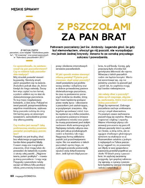 Stokrotka gazetka promocyjna od 2017-03-09, strona 60